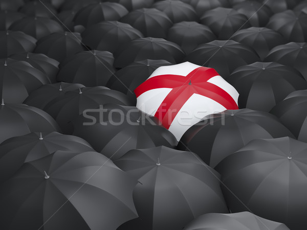Алабама флаг зонтик Соединенные Штаты местный флагами Сток-фото © MikhailMishchenko
