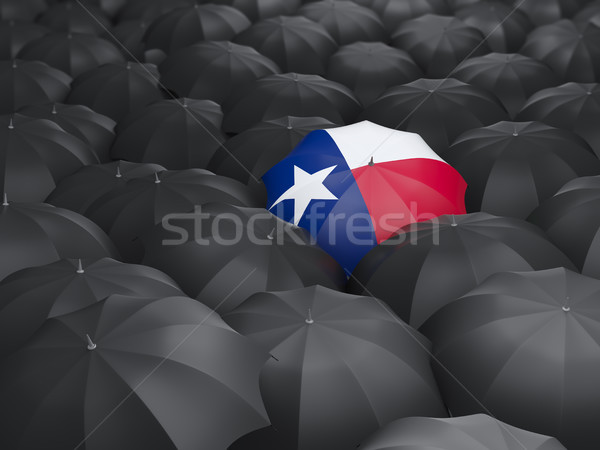 Texas bandeira guarda-chuva Estados Unidos local bandeiras Foto stock © MikhailMishchenko