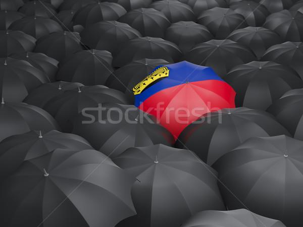 Umbrella with flag of liechtenstein Stock photo © MikhailMishchenko