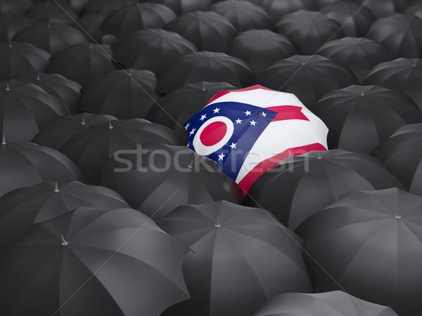 Ohio bayrak şemsiye Amerika Birleşik Devletleri yerel bayraklar Stok fotoğraf © MikhailMishchenko