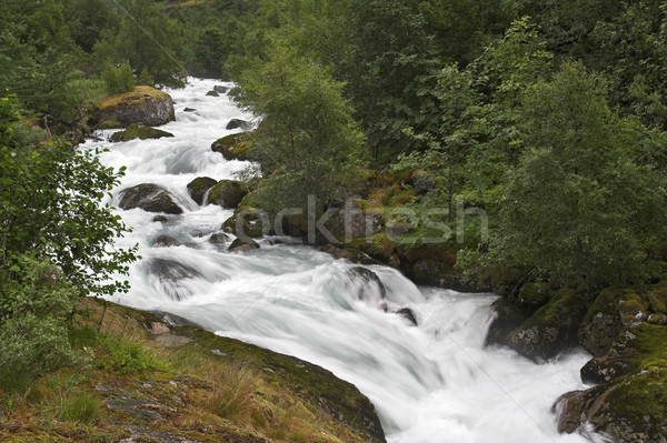 Mountain stream Stock photo © MikLav