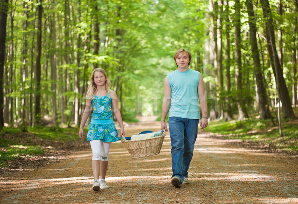Two teenagers going to picnic Stock photo © MikLav