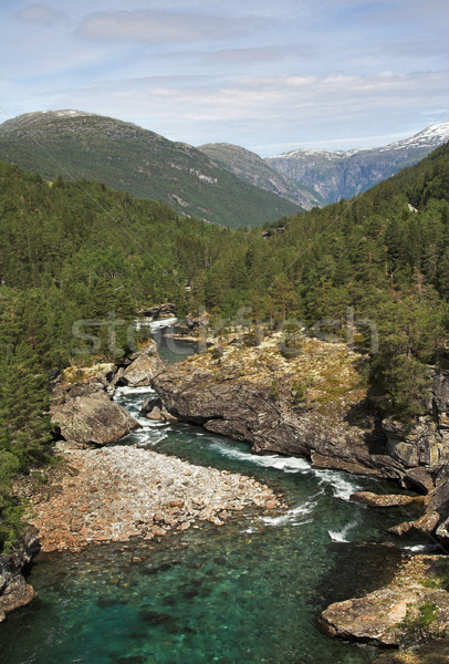 Mountain river Stock photo © MikLav