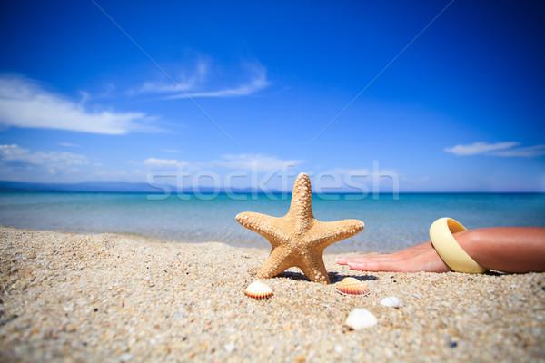 Starfish spiaggia conchiglie cielo Foto d'archivio © MilanMarkovic78