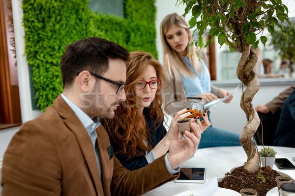 Tudós megvizsgál minták növények csapat egyetem Stock fotó © MilanMarkovic78