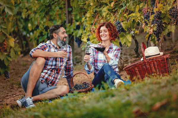 Piquenique vinha belo feliz sorridente casal Foto stock © MilanMarkovic78