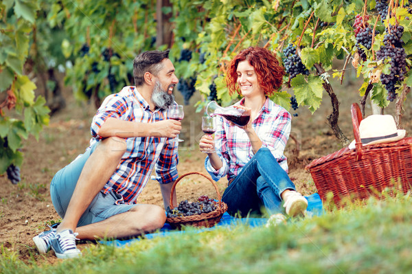 Piquenique vinha belo sorridente casal degustação Foto stock © MilanMarkovic78