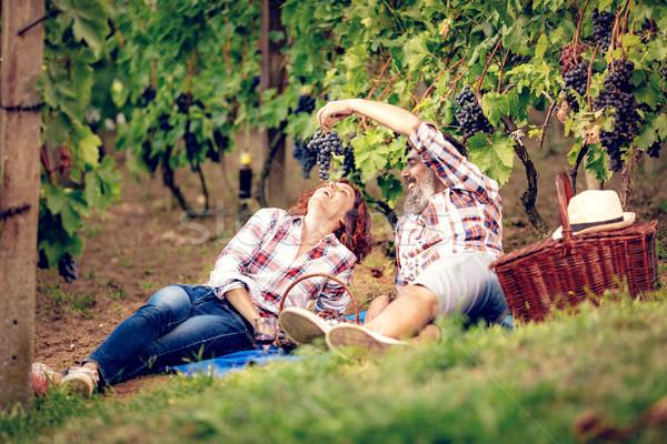 ピクニック 畑 美しい カップル ストックフォト © MilanMarkovic78