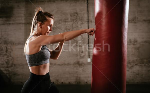 Boxing Workout Stock photo © MilanMarkovic78