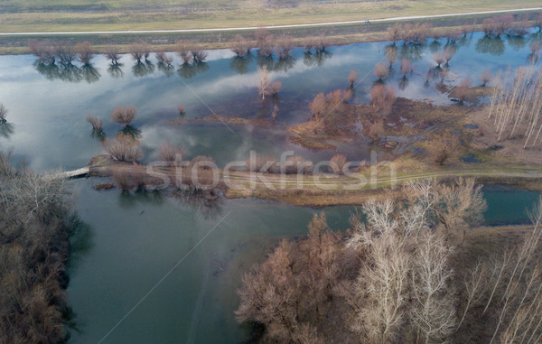 Swamp View From Above Stock photo © MilanMarkovic78