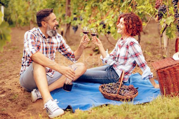 Zdjęcia stock: Piknik · winnicy · piękna · szczęśliwy · uśmiechnięty · para