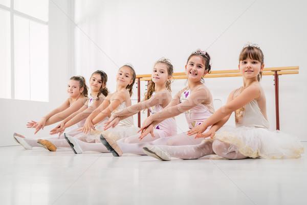 Stock fotó: Kicsi · kislányok · ruhák · pózol · együtt · balett