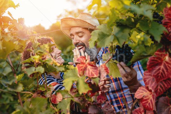 Proeverij druiven leuk mooie glimlachend Stockfoto © MilanMarkovic78