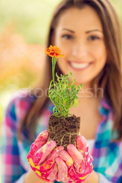 Spring Gardening Stock photo © MilanMarkovic78