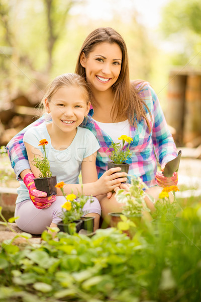an overview of satellite church and the concept of mother daughter planting Search the world's information, including webpages, images, videos and more google has many special features to help you find exactly what you're looking for.