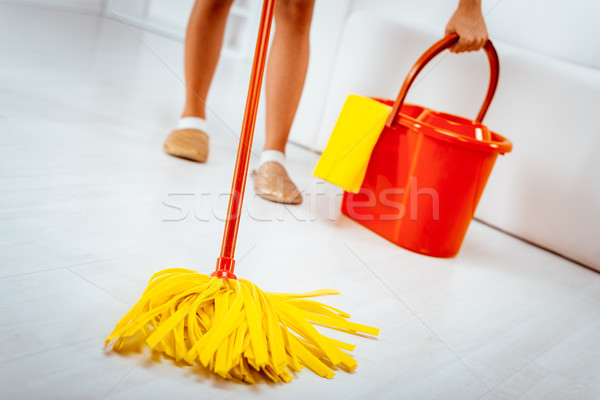 Cleaning Home Stock photo © MilanMarkovic78