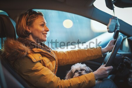 Not Safe In Your Own Car Stock photo © MilanMarkovic78