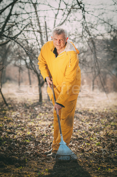 Cleaning Orchard With A Rake Stock photo © MilanMarkovic78