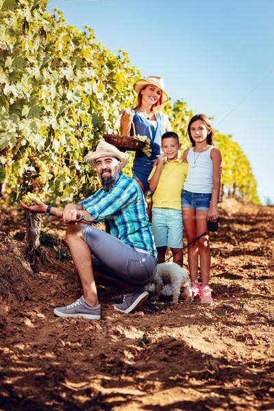 Família vinha belo jovem sorridente quatro Foto stock © MilanMarkovic78