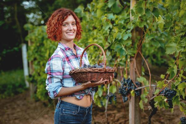 Basket Full Of Grapes Stock photo © MilanMarkovic78