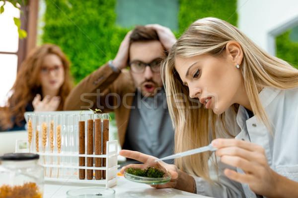 Tesztelés növények csapat egyetem elvesz kísérlet Stock fotó © MilanMarkovic78