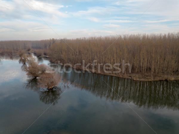 Jezioro widok z góry widok z lotu ptaka drzew lasu rzeki Zdjęcia stock © MilanMarkovic78