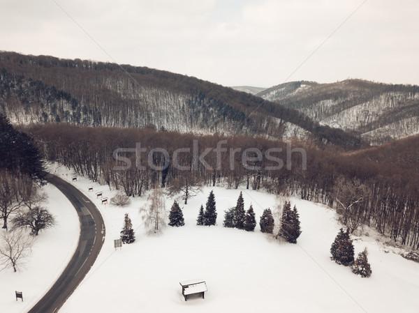 Mountain Under The Snow Stock photo © MilanMarkovic78