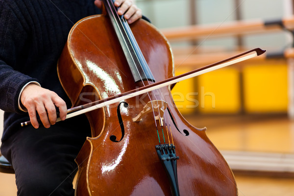 Man playing viola Stock photo © Minervastock