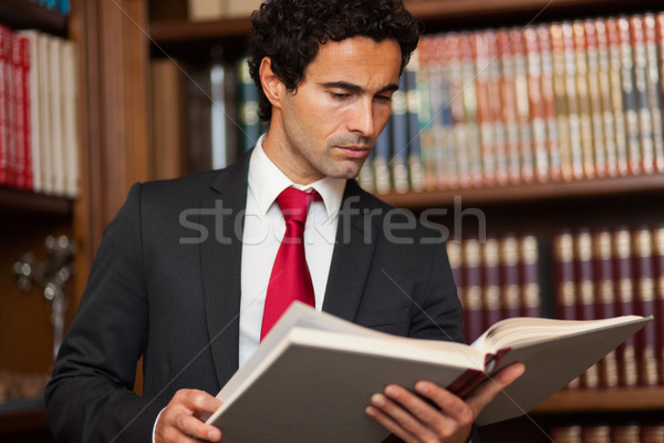 Young lawyer reading a book Stock photo © Minervastock