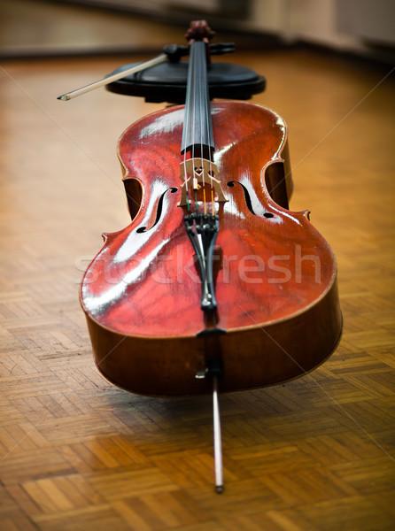 Violin  Stock photo © Minervastock