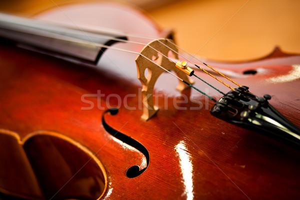 Violoncello Stock photo © Minervastock