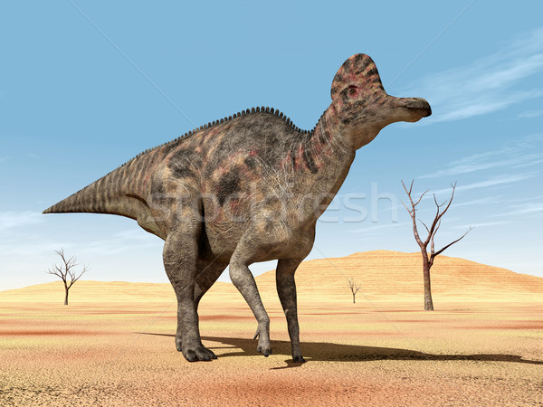 Dinosaur Corythosaurus Stock photo © MIRO3D