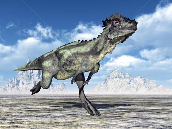 Dinosaur Pachycephalosaurus Stock photo © MIRO3D
