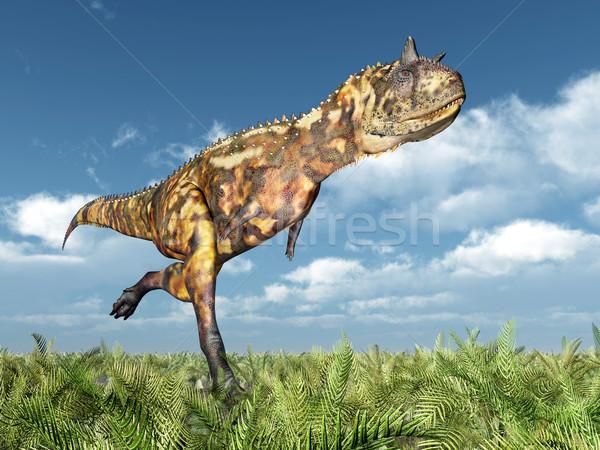 Dinosaur Carnotaurus Stock photo © MIRO3D