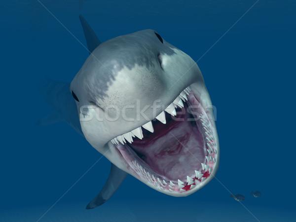 Great White Shark Attack Stock photo © MIRO3D