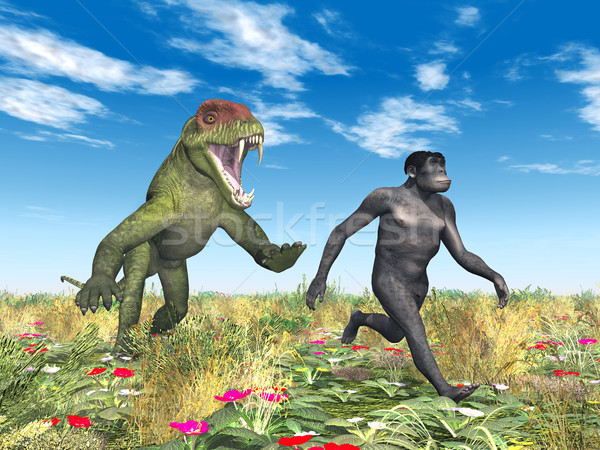 Homo Habilis - Human Evolution Stock photo © MIRO3D