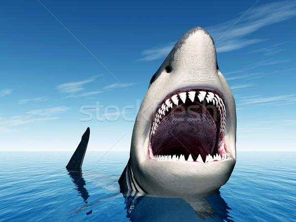 белый акула компьютер генерируется 3d иллюстрации Сток-фото © MIRO3D