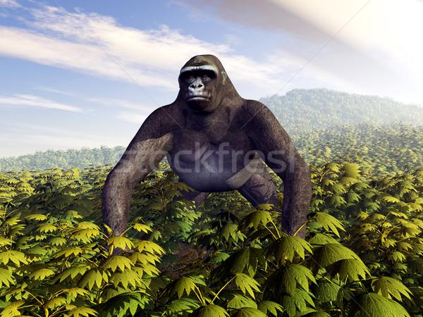Gorilla számítógép generált 3d illusztráció növények állat Stock fotó © MIRO3D