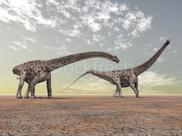 Dinosaur Diplodocus Stock photo © MIRO3D