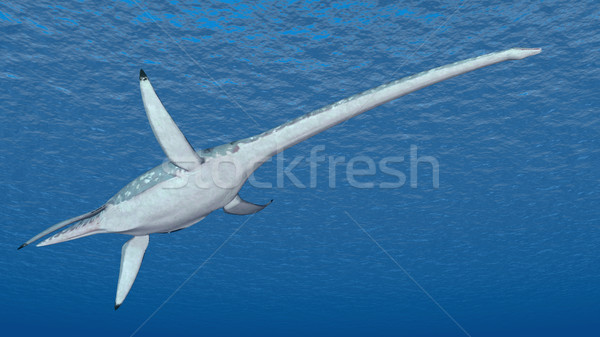 Computer generato illustrazione 3d marine rettile natura Foto d'archivio © MIRO3D
