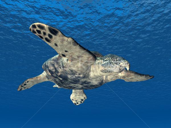 Gigante mare tartaruga computer generato illustrazione 3d Foto d'archivio © MIRO3D