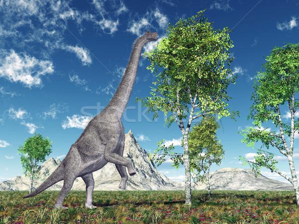 Dinosaur Brachiosaurus Stock photo © MIRO3D
