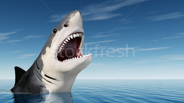 Great White Shark Stock photo © MIRO3D