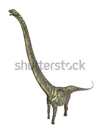 Dinoszaurusz számítógép generált 3d illusztráció izolált fehér Stock fotó © MIRO3D