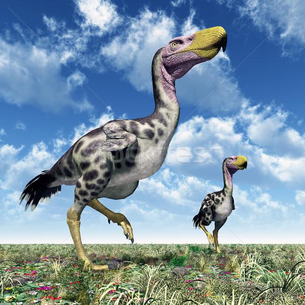 Stockfoto: Terreur · vogel · computer · gegenereerde · 3d · illustration · natuur