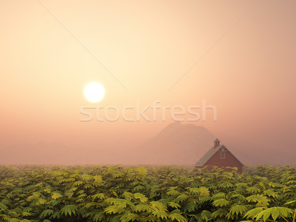 Landscape with Farmhouse Stock photo © MIRO3D