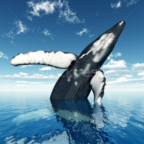 Ugrik bálna számítógép generált 3d illusztráció felhők Stock fotó © MIRO3D