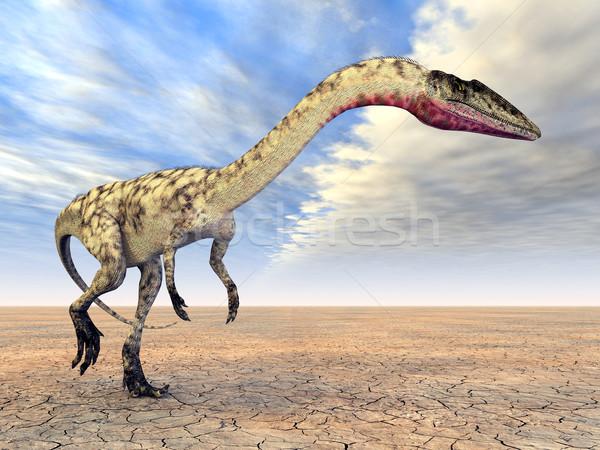 Dinosaur Coelophysis Stock photo © MIRO3D