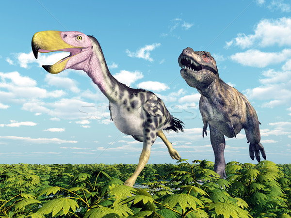 Tyrannosaurus Rex attacks the Terror Bird Kelenken Stock photo © MIRO3D