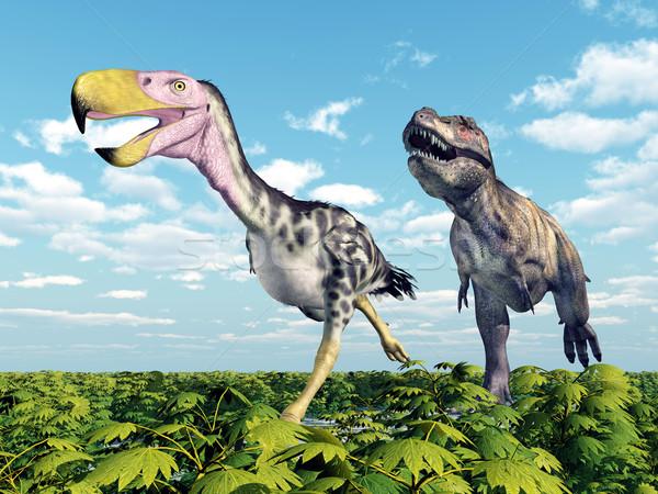 Terreur oiseau ordinateur généré 3d illustration dinosaures Photo stock © MIRO3D